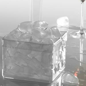 Portaghiaccio in Plexi Trasparente 14x14xh11 LIKE WATER